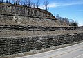 Slade Formation over Cowbell Member (Mississippian; Route 519 Outcrop, south of Morehead, Kentucky, USA) 1 (31330622047).jpg