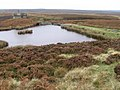 Small Reservoir on Middle Moss - geograph.org.uk - 1541870.jpg