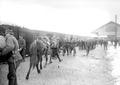 Soldaten und Basttiere bereit für den Verlad auf die Eisenbahn - CH-BAR - 3239428.tif