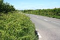 South Molton, the road to Swimbridge - geograph.org.uk - 441453.jpg