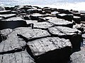 Southern tip of Staffa - geograph.org.uk - 521755.jpg