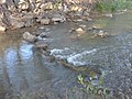 Spanish Fork river from Spanish Fork River Trail 1, Jul 15.jpg