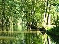 Spreewald - Spree - geo.hlipp.de - 41130.jpg