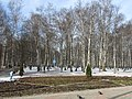 Spring is coming. February 2014. - В самом начале весны. Февраль 2014. - panoramio.jpg