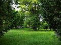Springer Schlössl Park 2.JPG