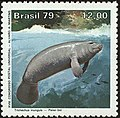 Stamp of Brazil - 1979 - Colnect 263982 - Amazonian Manatee Trichechus inunguis.jpeg