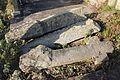 Stari spomenici na groblju u Gornjoj Crnući kraj Gornjeg Milanovca 15.jpg