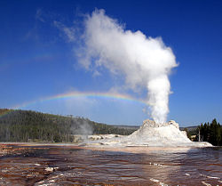 Geyser of water and steam erupting from an ashen cone.