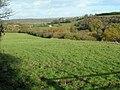 Stockwood Vale fields - geograph.org.uk - 1582979.jpg