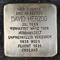 Stolperstein für David Herzog.jpg