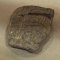 Stone Figure Fragment - 5th-7th Century CE - Moghalmari Artefact - Kolkata 2014-09-14 7878.JPG