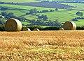 Stubble and bales near Park Farm - geograph.org.uk - 1009532.jpg