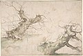 Studies of Two Pollard Willows; Verso- Wide Landscape Prospect MET DP801125.jpg