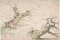 Studies of Two Pollard Willows; Verso- Wide Landscape Prospect MET DP801125.jpg