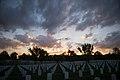 Sunrise at Arlington National Cemetery (29838649473).jpg