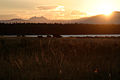 Sunrise on Yellowstone Lake (3679485674).jpg