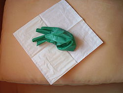 Surgical gloves 36.JPG