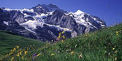 Swiss Jungfrau mountains.jpg