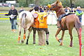 Swiss Pony Games 2011 - Finals - 083.JPG