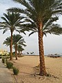 Taba Heights Beach R01.jpg