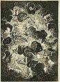 Tableaux du temple des muses - tirez du cabinet de feu mr. Favereau...gravez en tailles-douces par les meilleurs maistres de son temps, pour representer les vertus and les vices, sur les plus (14561047708).jpg