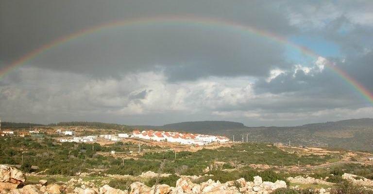 Tal Menashe Rainbow