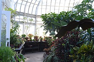 Botanical garden - Talcott Greenhouse at Mount Holyoke.
