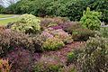 Tatton Park 2015 22 - Heather.jpg