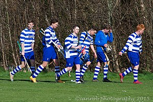 Tayforth Vs Newtonmore 9297 (16526867024).jpg
