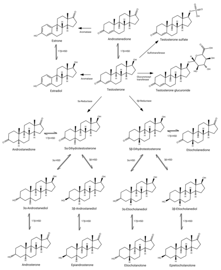 Testosterone structures