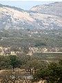 Texas Hill Country Nima (2).JPG