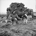 The British Army in North-west Europe 1944-45 B15448.jpg