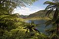 The Green Lake, Rotokakahi.jpg
