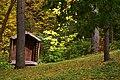 The Morrison Woodland Garden (6618096015).jpg