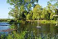 The Pond at Stixwould - geograph.org.uk - 46584.jpg