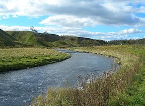 The River Ayr - geograph.org.uk - 569717.jpg