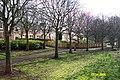 The Trees on West Bridge Street - geograph.org.uk - 375889.jpg