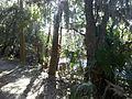 Theodore Roosevelt Nature Trail - panoramio (2).jpg