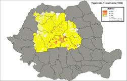Tigani in Transilvania (1850).png