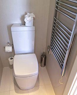 Flush toilet toilet that disposes of human excreta by using water to flush it