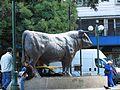 Toro en la Plaza de Armas, Osorno. - panoramio.jpg