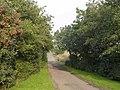 Track leading to Budshaw Farm - geograph.org.uk - 241261.jpg