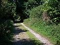Track near Vernham Dean - geograph.org.uk - 981073.jpg