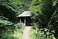Trees and cabin with dappled sunshine in Harestanes woodland 08.jpg