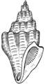 Turreted Shell (PSF).png