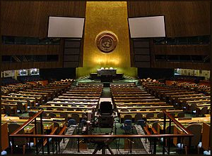 Indigenous intellectual property - United Nations General Assembly 2003