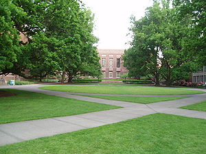 View of the Memorial Quad, facing south. The Knight Library can be seen in the distance.