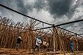 USAID Measuring Impact Conservation Enterprise Retrospective (Philippines; Nagkakaisang Tribu ng Palawan) (39395629565).jpg