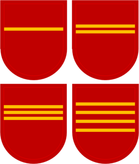 319th Field Artillery Regiment Military unit