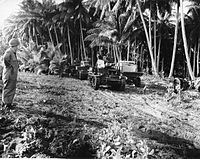 The U.S. employment of tanks in Guadalcanal was hampered by the nature of the terrain